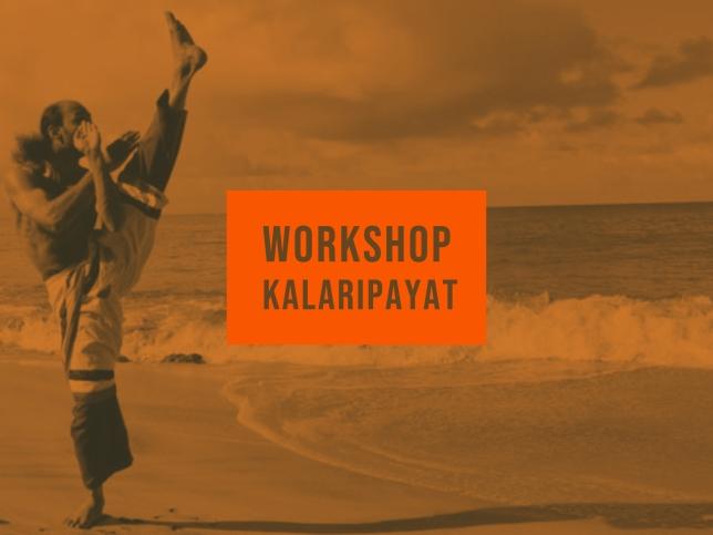 Kalaripayat workshop (1)