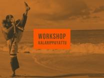 Kalaripayat workshop (2)
